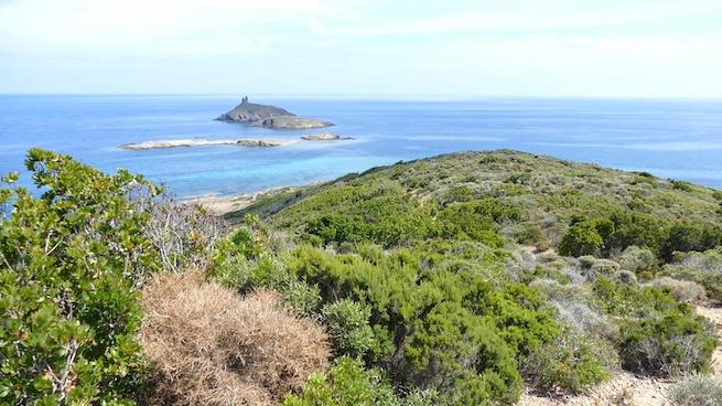 Campen auf Korsika Plage de Tamarone
