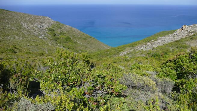 Campen auf Korsika Wanderung Barcaggio